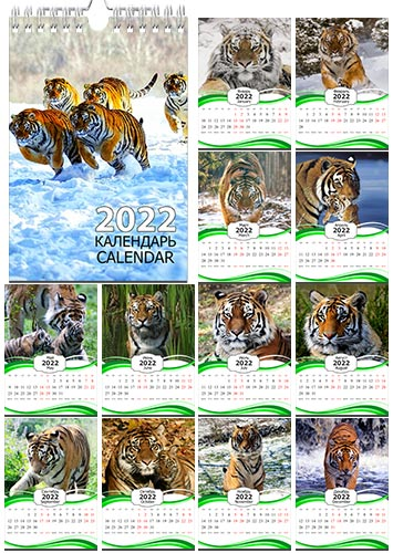 Настенный календарь на пружине на 2022 год - Тигры